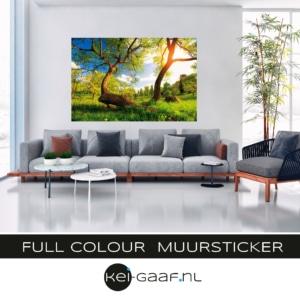 Full colour muursticker