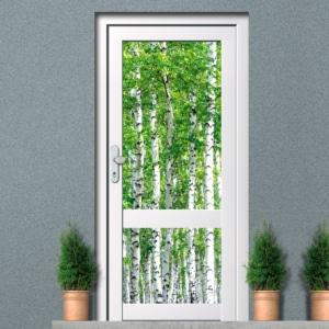 Raamfolie voordeur natuur berken boom